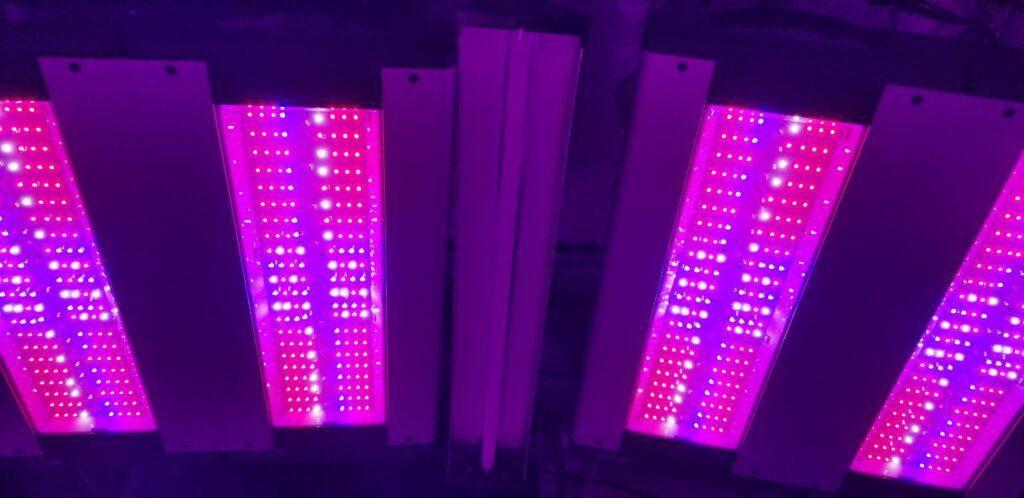 Cannabis Grow Light Affiliate Program - LED