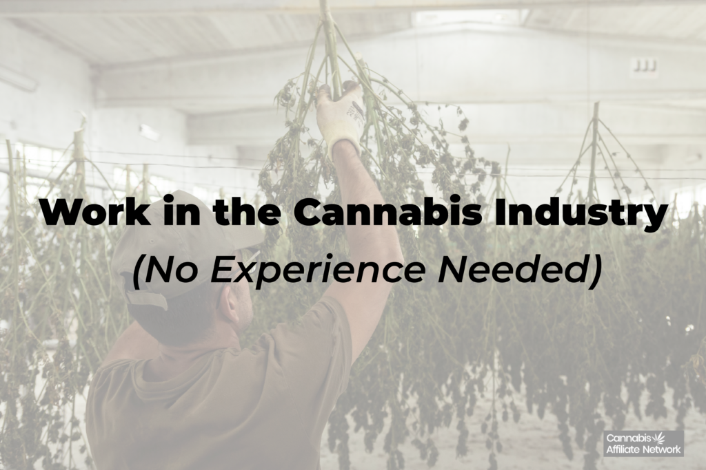 Get a Job in the Cannabis Industry - Affiliate Marketing