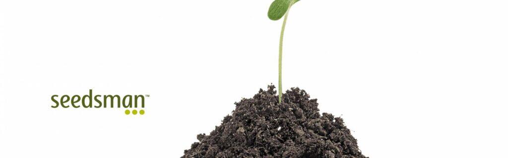 Join the SeedsMan cannabis affiliate program