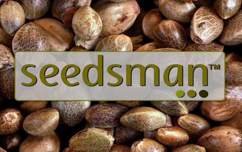Join the marijuana seeds affiliate program